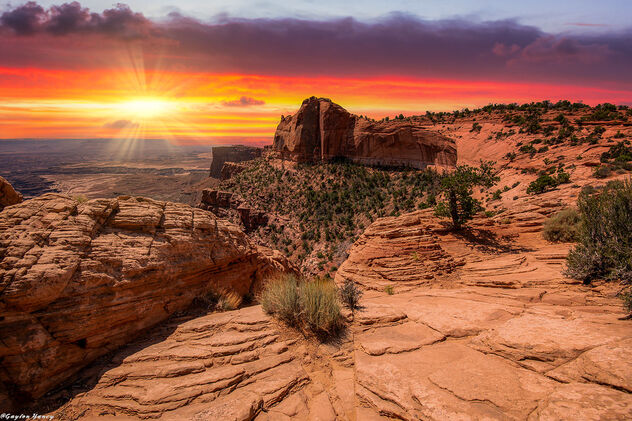 Canyonland National Park - image #473227 gratis