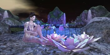 PhotoContest Poison Rouge & Opia ~Meera30 Resident~Always take the scenic route~Number 1 - image #473697 gratis