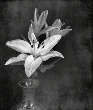 Vase with Lilies - image #479737 gratis